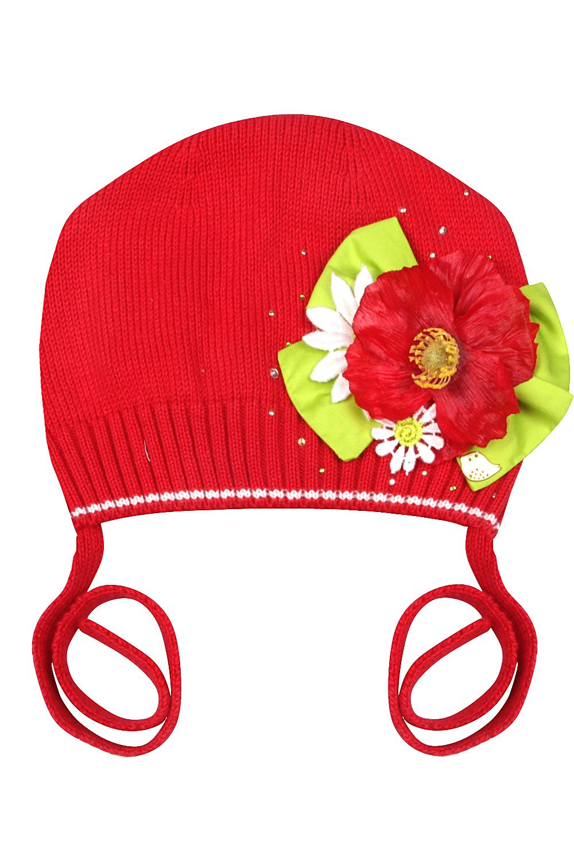 картинки шапка красной шапочки рады