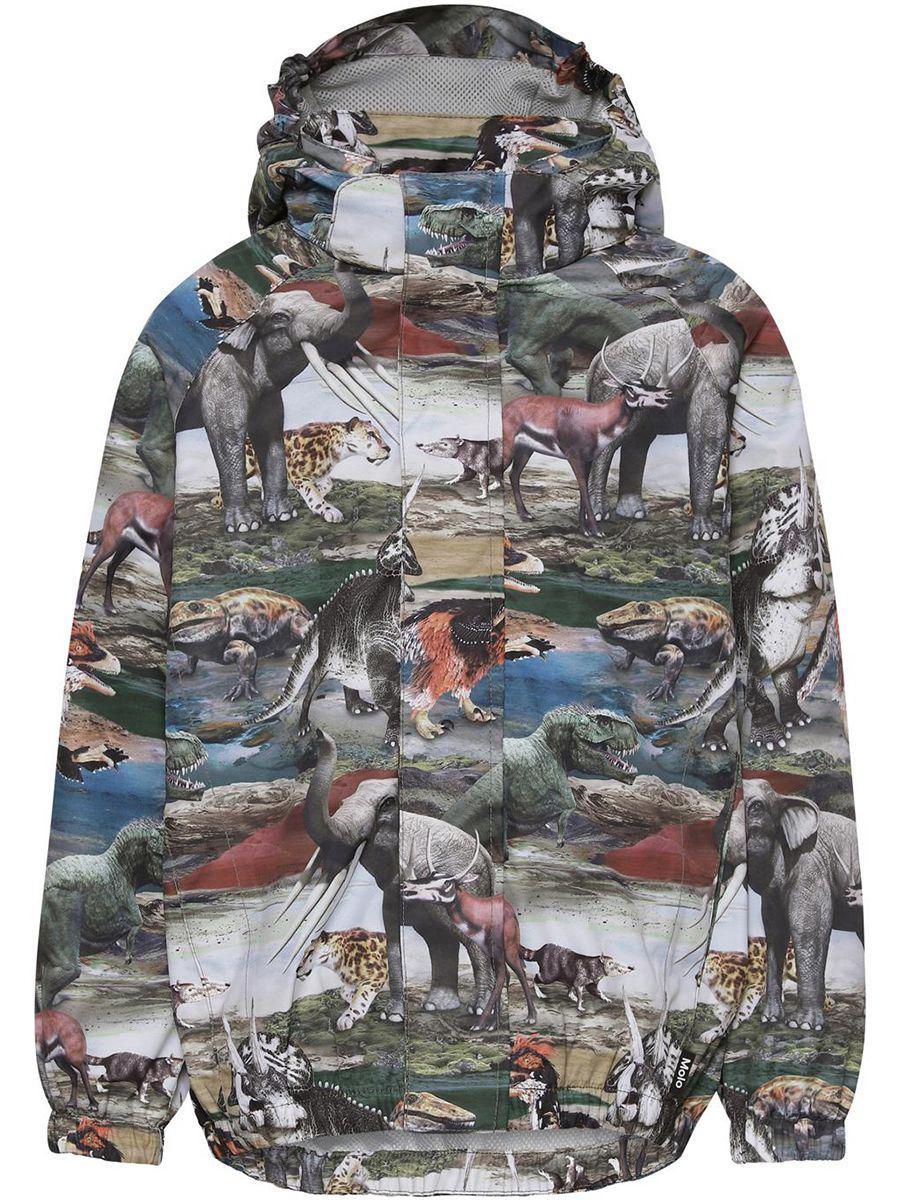Купить Куртка, Molo, Разноцветный, Мужской