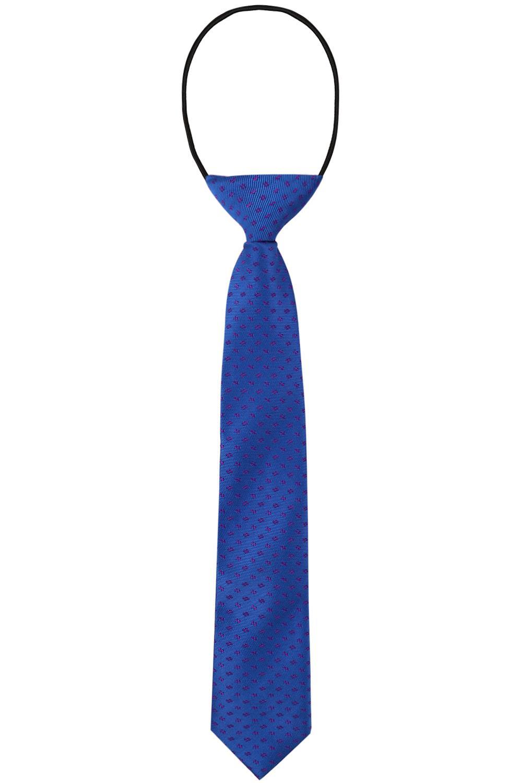 галстуки и бабочки амарант для мальчика, голубые